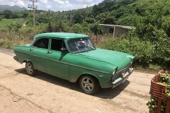 Green Lada in the countryside