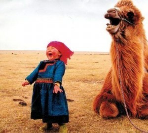 kid and camel