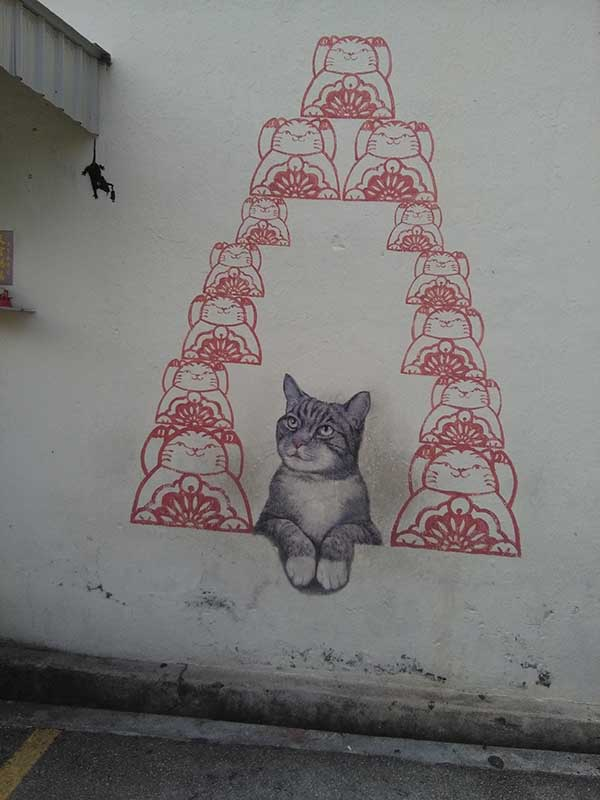 cat & rat