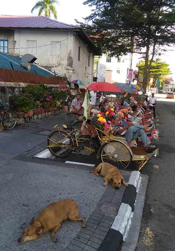 real trishaw