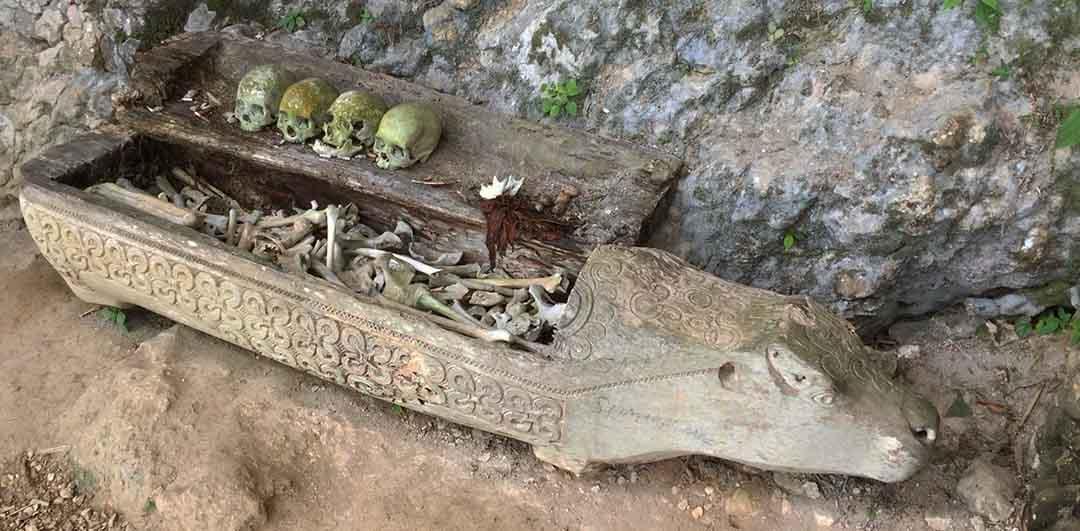 Chasing dead bodies in Toraja